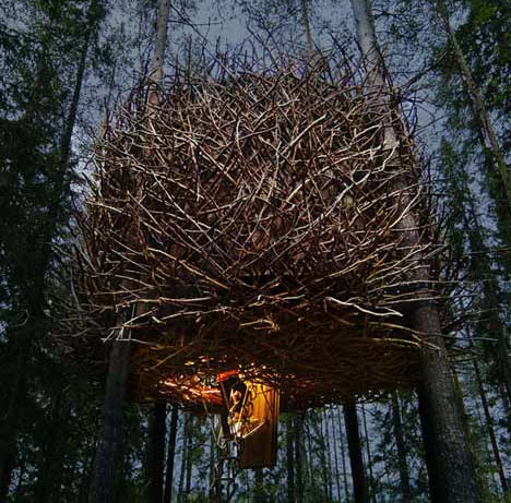 tree-hotel-birds-nest