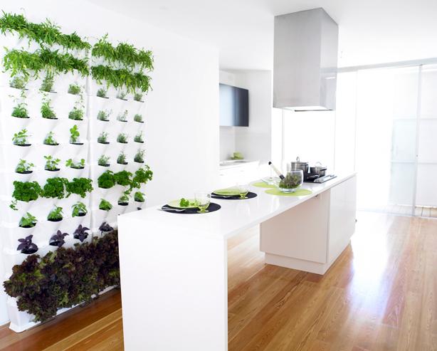 Giardini verticali domestici: l\'orto da cucina - Casa.it