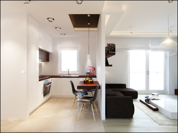 Mini appartamenti 5 soluzioni sorprendenti dai 40 ai 50 for Case di design in vendita