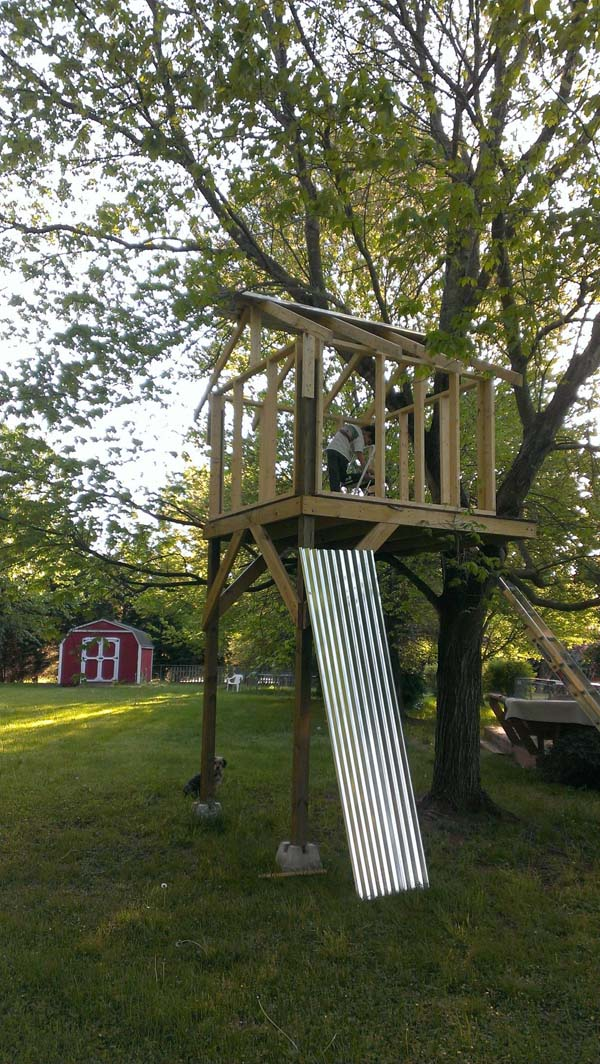 Il regalo di un pap al proprio figlio una casa sull 39 albero dove fantasticare su mirabolanti - Costruire casa albero ...