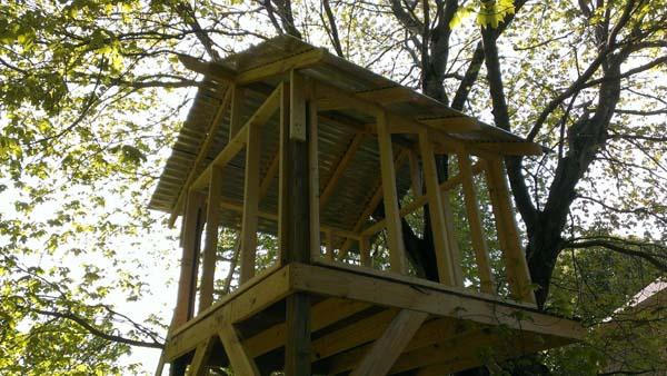 Il regalo di un pap al proprio figlio una casa sull 39 albero dove fantasticare su mirabolanti - Costruire una casa sull albero per bambini ...