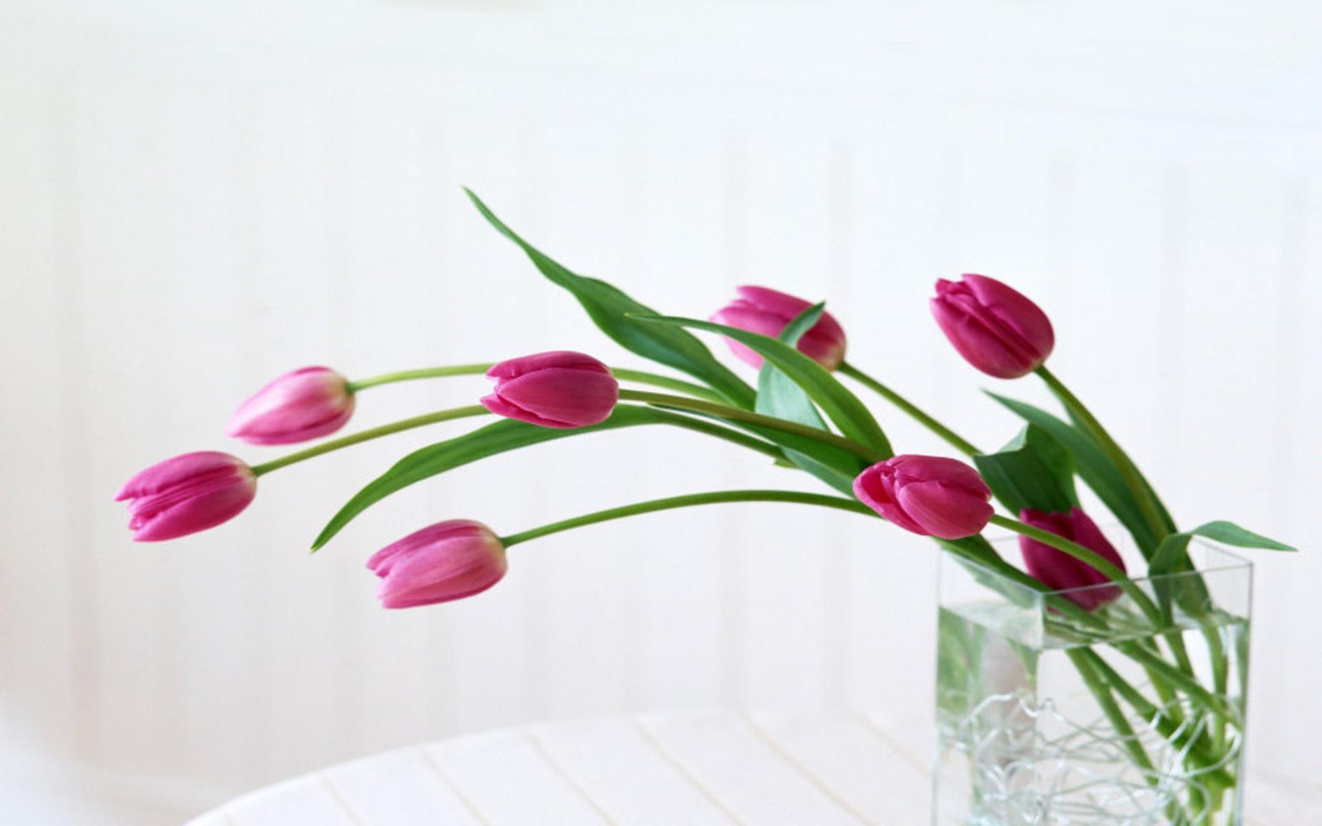 I fiori arredano e parlano decorare la casa con i fiori for Fiori con la l