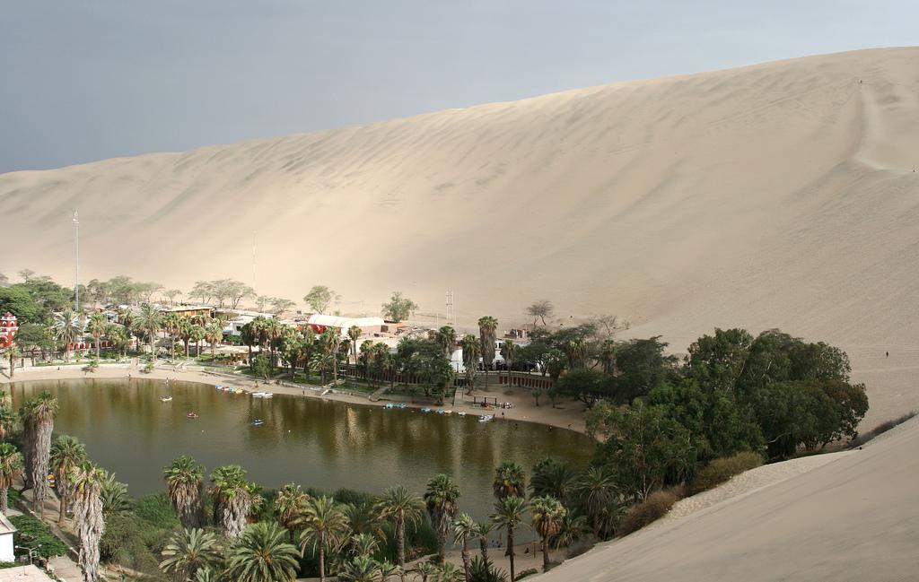 Oasis_de_Huacachina_y_sus_alrededores,_Perú_—_Carlos_Adampol