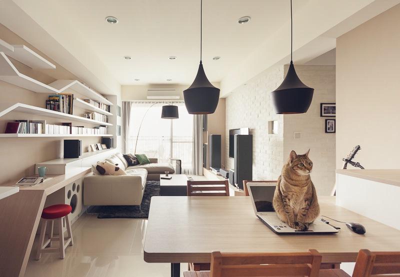 casa_gatto9g