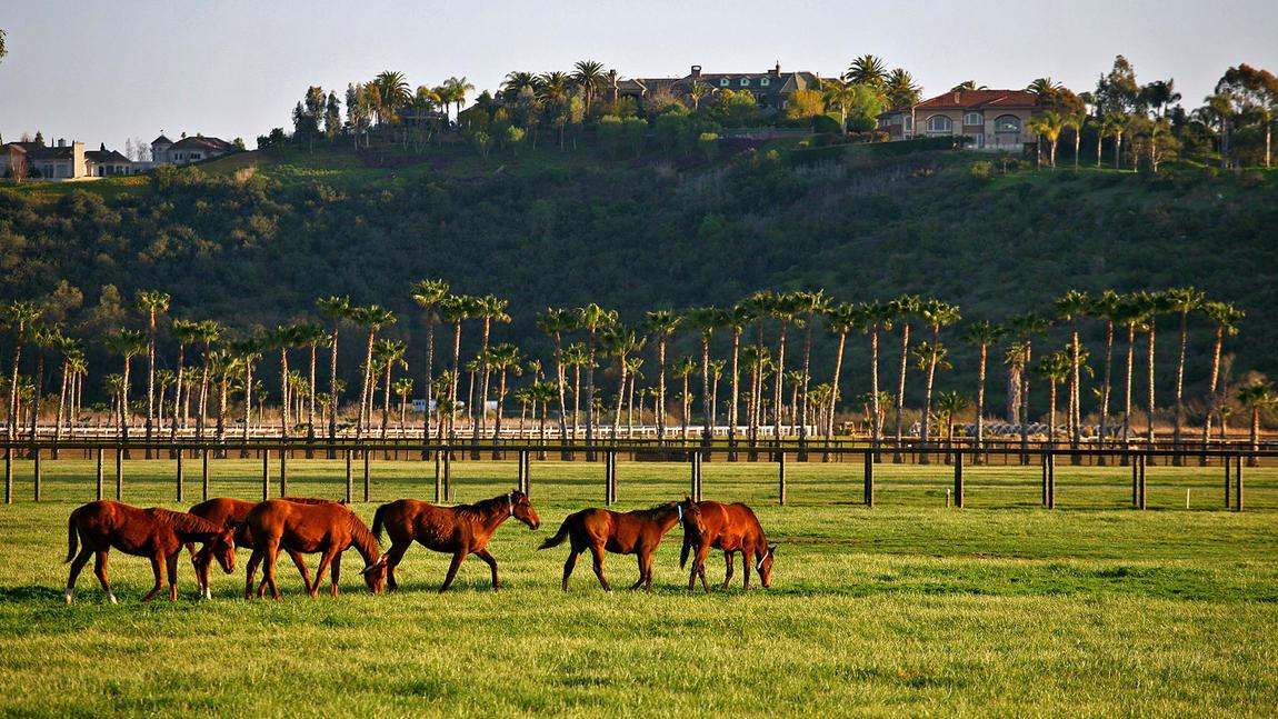 Bill gates compra un ranch da 18 milioni for Ranch di case fresche