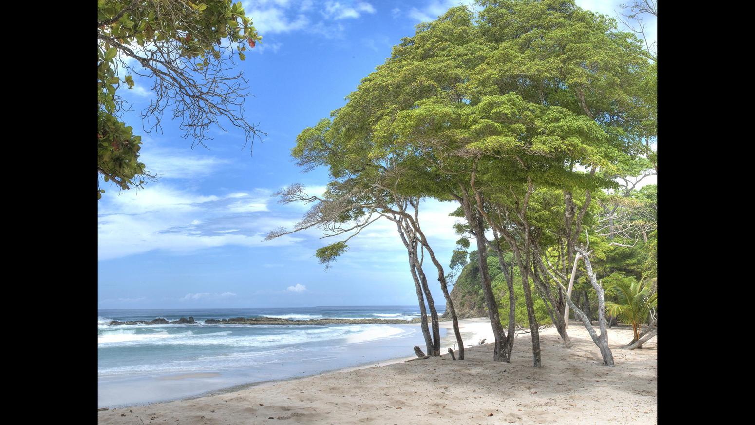 In vendita la villa nella giungla del costa rica di mel gibson for Piscina tartarughe