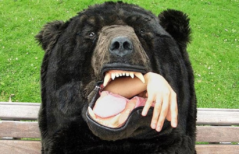 sacco a pelo orso 2