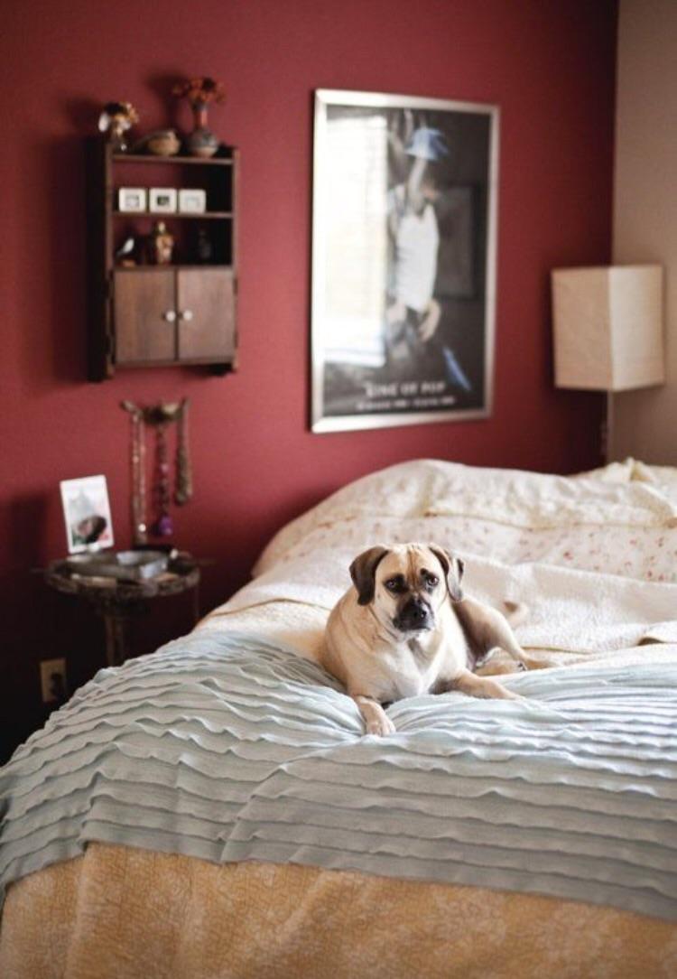 I 6 colori di tendenza per le pareti di casa for Colori camera da letto