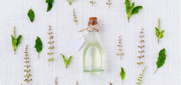 Rimedi naturali contro le zanzare in casa - Rimedi contro le zanzare in giardino ...