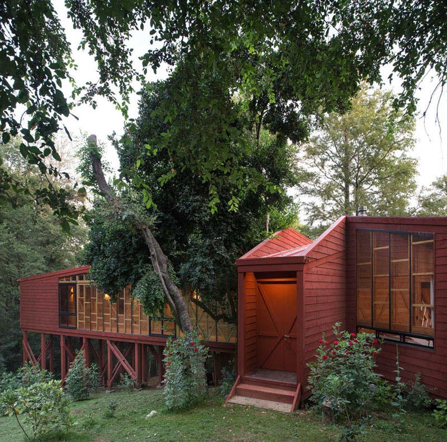 casa-foresta-cile_05