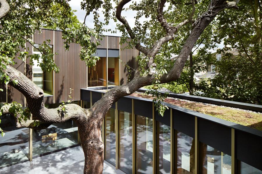 londra-casa-albero-colonnato-esterno3