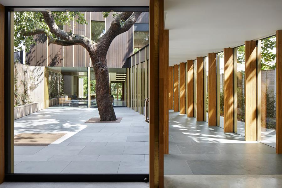 londra-casa-albero-colonnato3