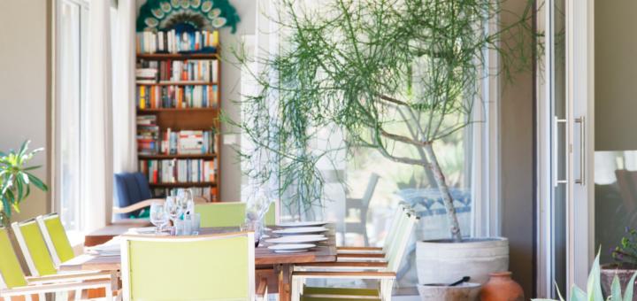 le migliori piante per purificare l'aria in casa secondo la nasa