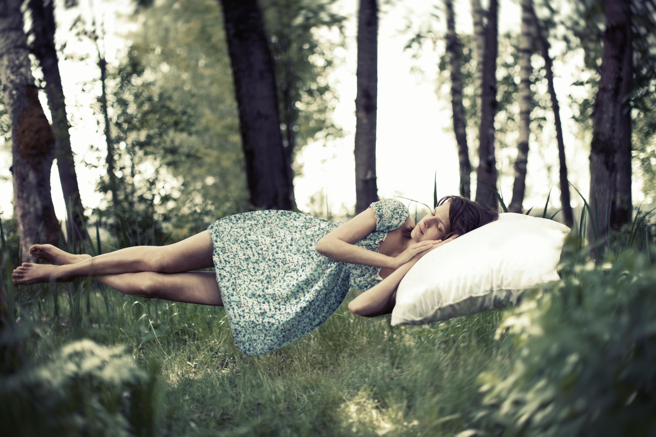 Come purificare l aria in camera da letto con 3 piante - Piante che purificano l aria in camera da letto ...